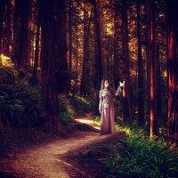 В лесу :: Дарья Дель