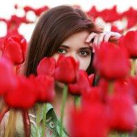 Весна пришла :: Андрей Долгошеев