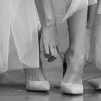 Ножки :: Андрей Агапов
