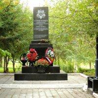 Памятник погибшим солдатам :: Александр Качалин