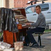 Уличный тапер... :: Владимир Бровко