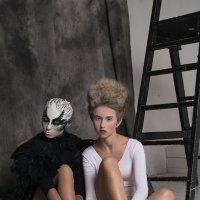 Черный лебедь :: Любовь Болотина
