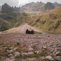горные пейзажи :: Svetlana AS