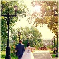 Свадьба Дениса и Елены :: Дмитрий Васильев