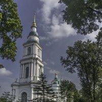 Колокольня Всехсвятского собора в Туле. :: Rabbit Photo