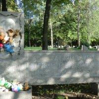 В разных войнах, конфликтах - дети гибнут и сейчас... :: Владимир Павлов