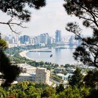 Baku :: Rövşən Elman