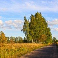 В поле :: Наталья
