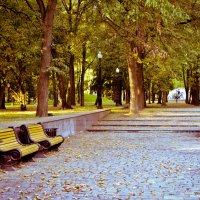 парк. :: Viktoria Tkach