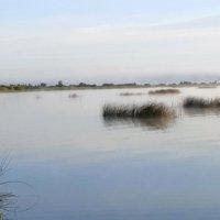 Андреевское озеро(Тюмень) :: Олег Петрушов