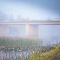 Предрассветный туман :: Сергей Смирнов
