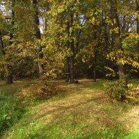 Осень не только по календарю :: Андрей Лукьянов
