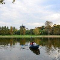 В плавании. :: Oleg4618 Шутченко