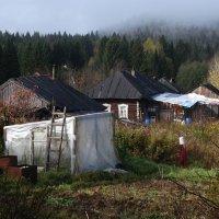 Утро в деревне :: Валерий Чепкасов
