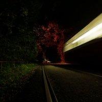 Ночь :: михаил кибирев