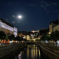 Лунная ночь :: Евгений Кривошеев