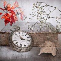 «Такая осень, как девчонка ...» :: vitalsi Зайцев