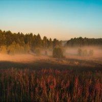 Утро туманное :: Роман Макаров