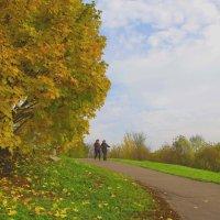 Прогулки по осеннему парку. :: Александр Атаулин