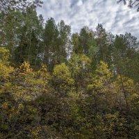 осень и скалы 3 :: Алексей -