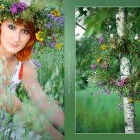 Лето :: Анна Андреева