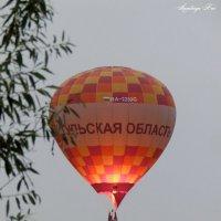 Воздушный шар :: Анастасия Bur