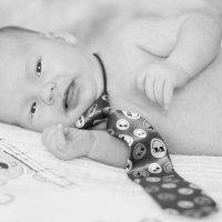 малыш :: Елена Лабанова