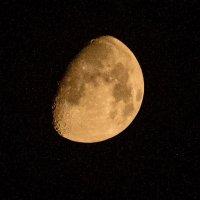 луна :: олеся тронько