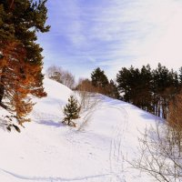 Снега Домбая :: Марья Зинченко