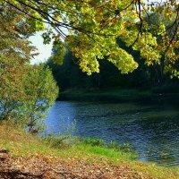Реадовское озеро :: Милешкин Владимир Алексеевич