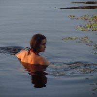 Водоплавающая дама :: Андрей Лукьянов