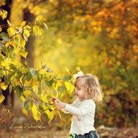 Осень :: Елена Рябчевская
