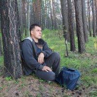 в осеннем лесу :: Виктор Филиппов