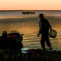 Вечерняя рыбалка :: Алла ************