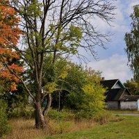 Осень... :: Валера39 Василевский.