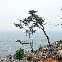 Байкал :: Lagertha ...