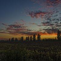 Закаты в сентябре самые яркие... :: Ксения Довгопол