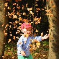 Золотая осень в разгаре! :: DimCo ©