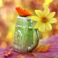 цветочное чаепитие :: ганичев алексей