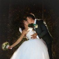 Свадьба Алены и Кирилла :: Андрей Молчанов