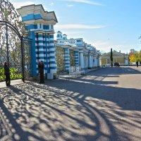 Решетка Екатерининского дворца :: Наталья
