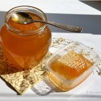 Лучший подарок, по-моему, мёд! :: Anna Gornostayeva
