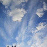 Небесные акварели . :: Мила Бовкун