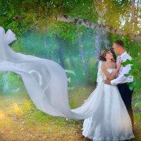 Свадебная сказка :: Александр Кузьминов