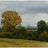 осень в приуралье (Башкирия) :: BEk-AS 62