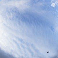 Самолет легко меня уносит... :: Елена Леневенко