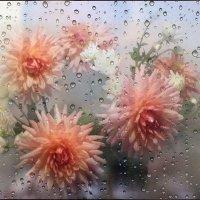 Осенние цветы... :: Эля Юрасова