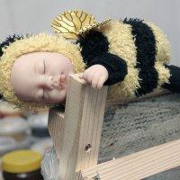 Правильная пчёлка :: Виктор (victor-afinsky)