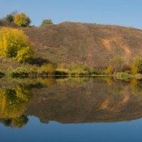 Река Пьяна осенью :: Роман Царев