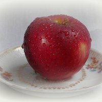 Наливное яблочко! :: Ирина Олехнович